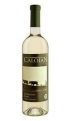 Caloian Sauvignon-Blanc