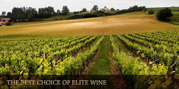 preturi vinuri